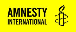 https://www.prografix.de/wp-content/uploads/2019/01/Amnesty-International-300x126.png